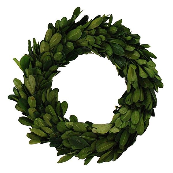Boxwood Wreath - 19 cm