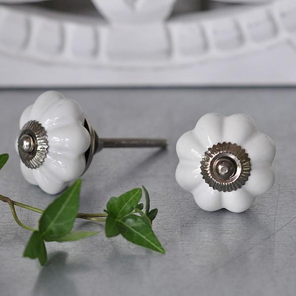 Porcelain Knob Garlic - White