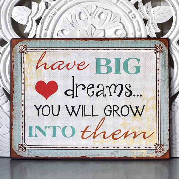 Tin Sign Have big dreams