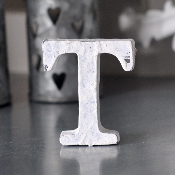 Small Wooden Letter T - White