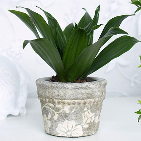 Flowerpot Grey Antique Flower