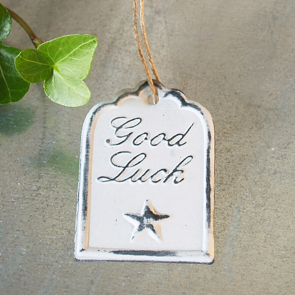 Tag Good Luck with star 6 x 4 cm - White