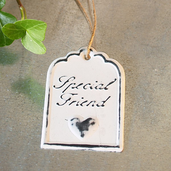 Tag Special Friend 6 x 4 cm - White