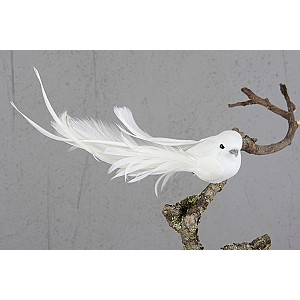 Dove with clip