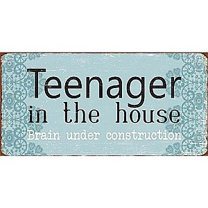Magnet Teenager in the house