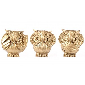 Knobs Owls
