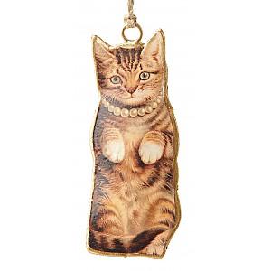 Katt med halsband