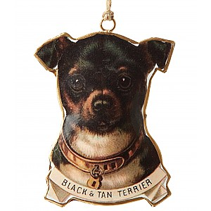 Hund Black & Tan Terrier