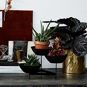 Flower Stand with 3 Bowls