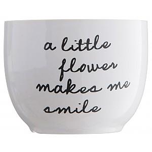 Blomkruka Smile