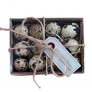 Quail Eggs 12 pcs
