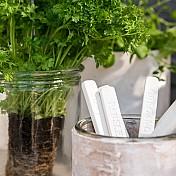 Plant Markers & Plant Labels